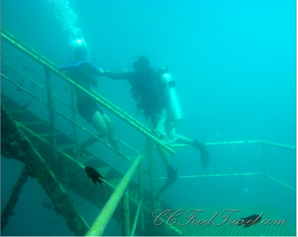 kk borneo reef world pontoon meijo